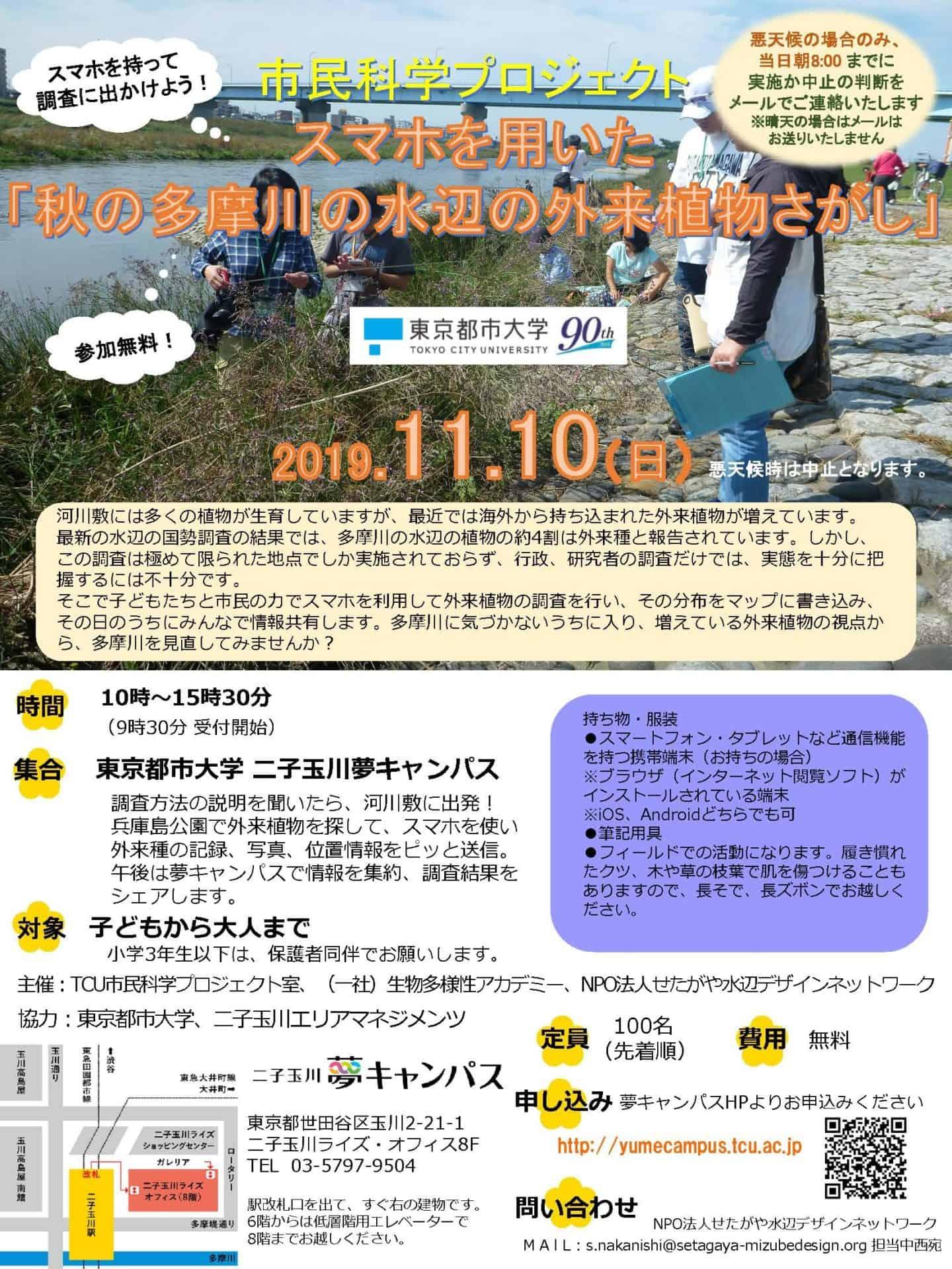 20191110-多摩川外来植物探し